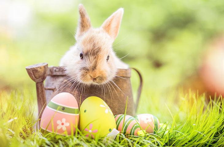 Pâques dans les autres pays